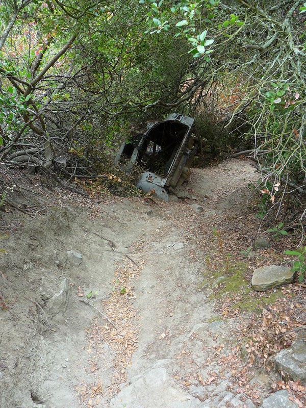 Aliso Woods - Car Wreck Trail